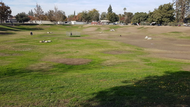 Dog park in Bakersfield