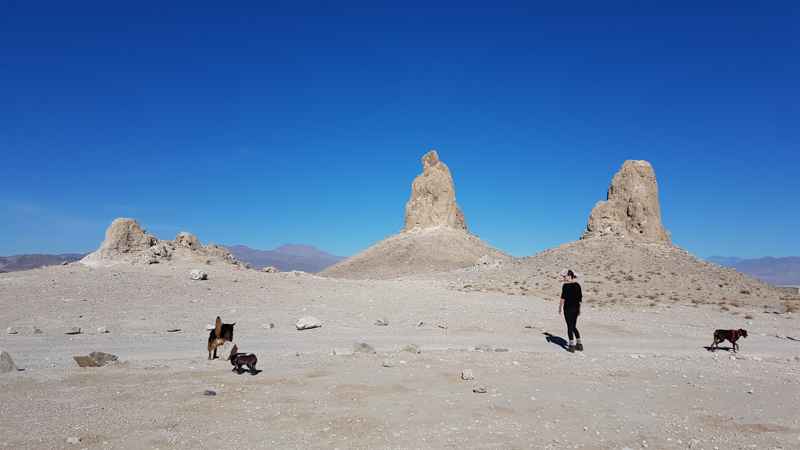 Leanne, Lexy, Pebbles, and Coconut at the Trona Pinnacles