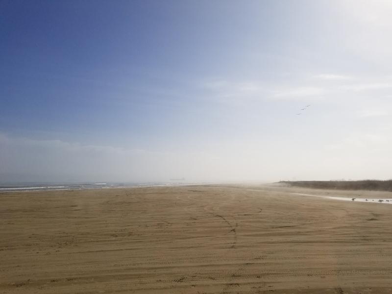Bolivar Flats Free Beach near Galveston, Texas