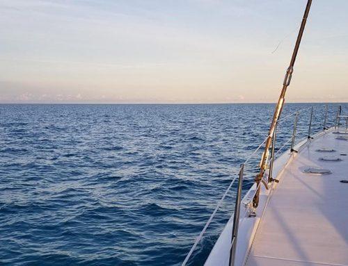 Just Catamarans VS MultiTech Marine